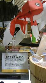 金魚ちょうちん☆